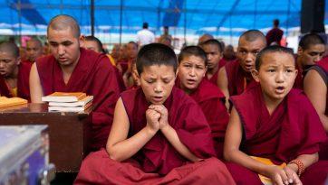 2019 09 04 Dharamsala G10 Dsc08590