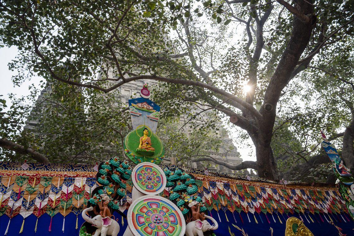 2019 04 26 Delhi Gallery Gg 08 Dsc02144