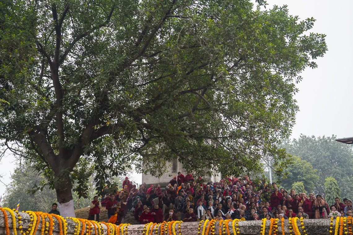 2018 03 20 Sarnath G07 Ohh5889